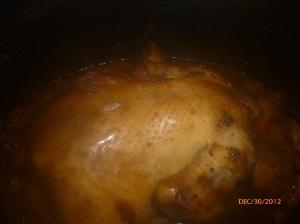 crock pot chick 012