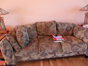 The couch; the books on the couch are mine, too